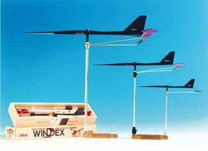 veleta-windex-15