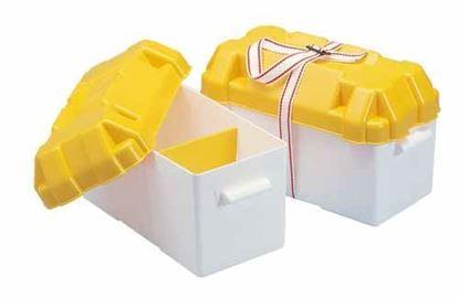 cajas-de-bateria