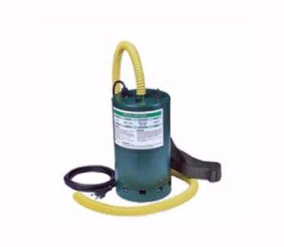 bomba-electrica-bravo-220v1000